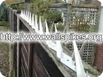 Metal Razor Wire for Wall Security